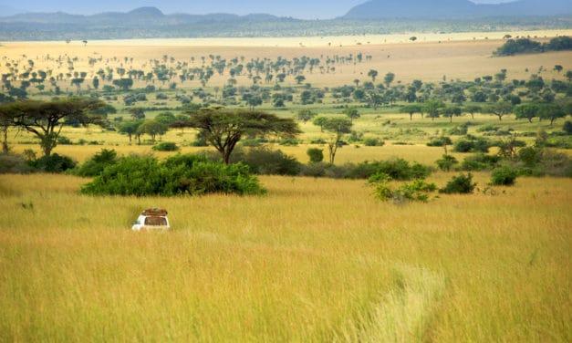 105 best national parks in Africa – Safari, wildlife, & game reserves