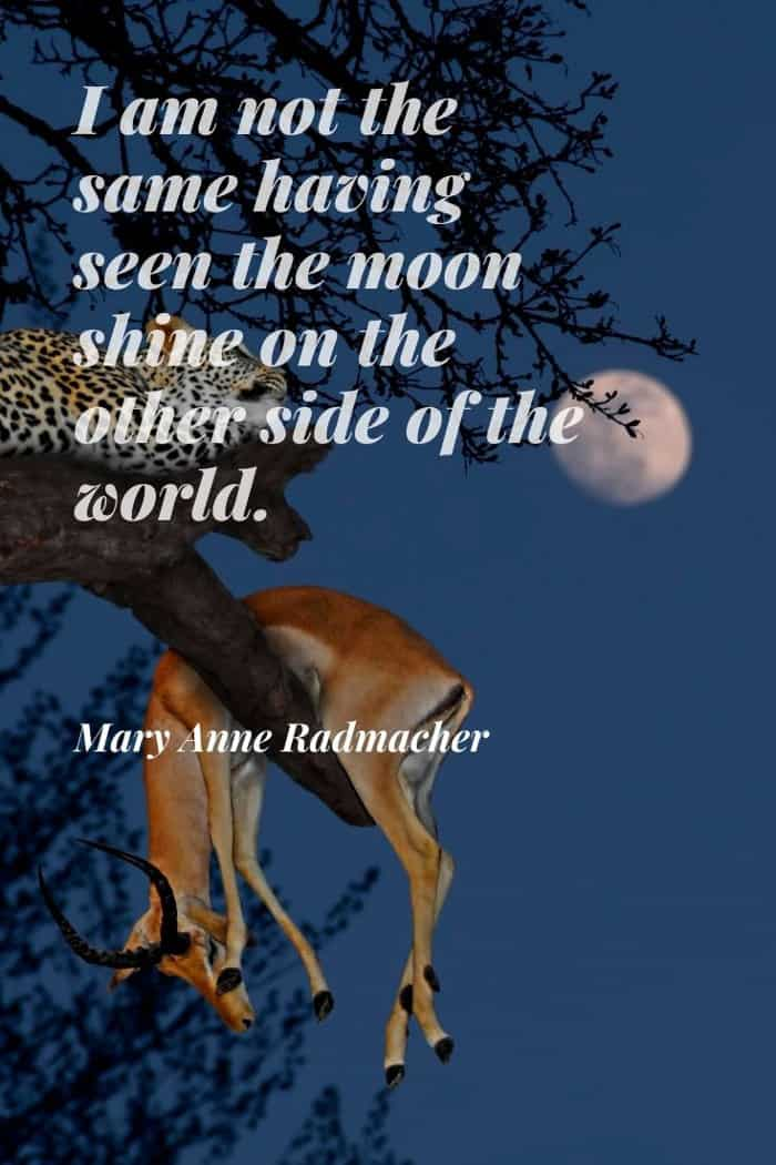 Mary Anne Radmacher quote about the moon