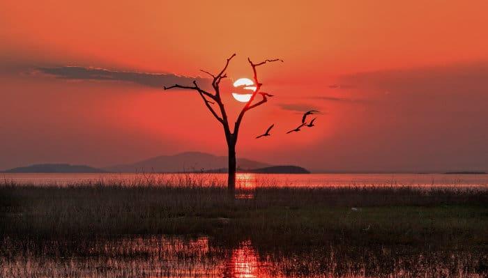 Magnificent sunset over Matusadona National Park in Zimbabwe