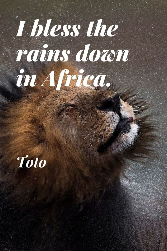 Toto quote about blessing the rains down in Africa