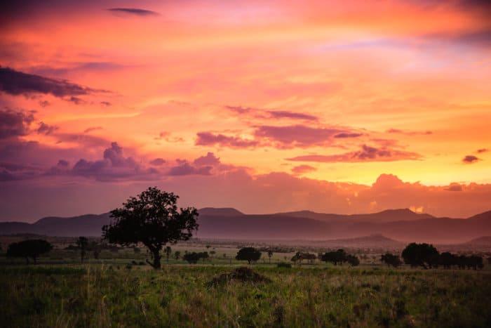 Kidepo Valley National Park at sunset, Uganda