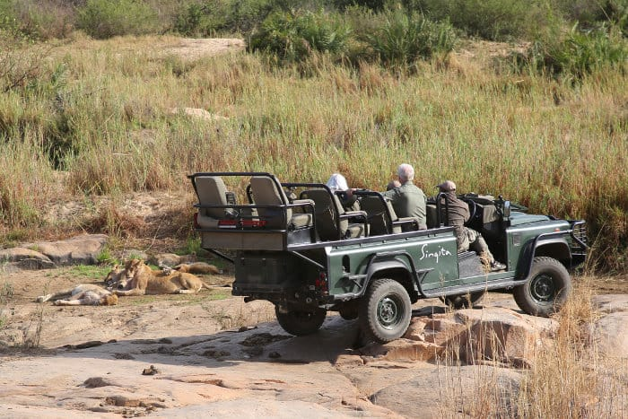 Tourists observing lions in an open safari vehicle, Sabi Sands Game Reserve, South Africa