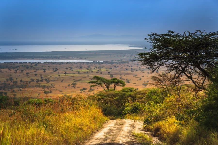 Queen Elizabeth National Park: the crown of Uganda wildlife
