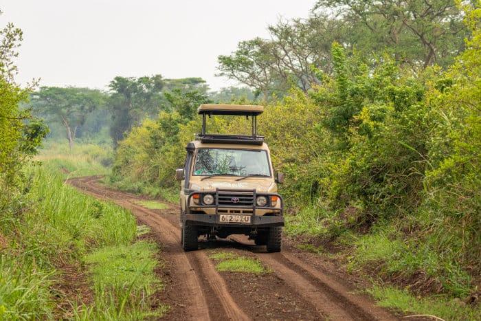 Quality safari in Queen Elizabeth National Park, Uganda