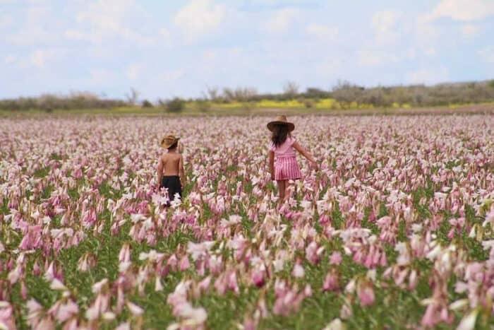 Two kids enjoying the Sandhoff lilies in full bloom