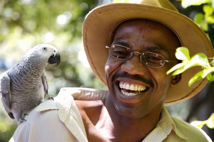 Smiling tour guide with an African grey parrot on his shoulder